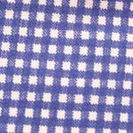 Cotton Blue Gingham Print
