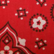 Cotton Red Bandana Print